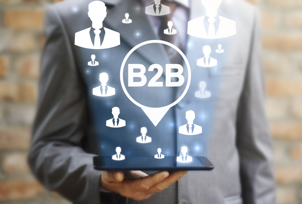 b2b search marketing