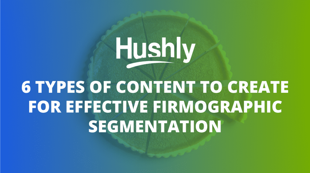 firmographic segmentation