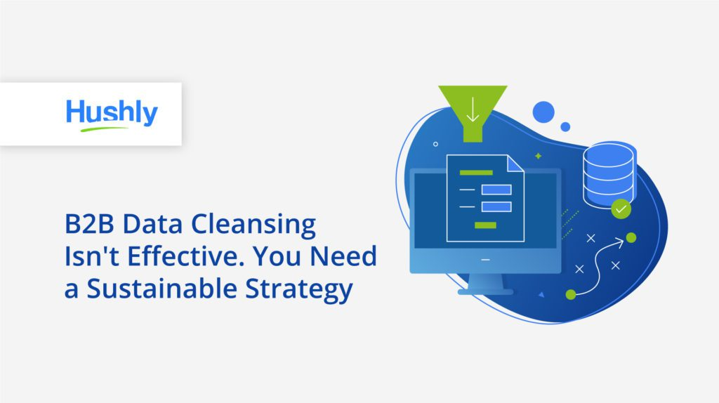 B2B data cleansing